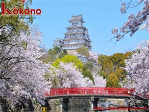 Học từ vựng tiếng Nhật về các đồ dùng trong nhà bạn cần biết