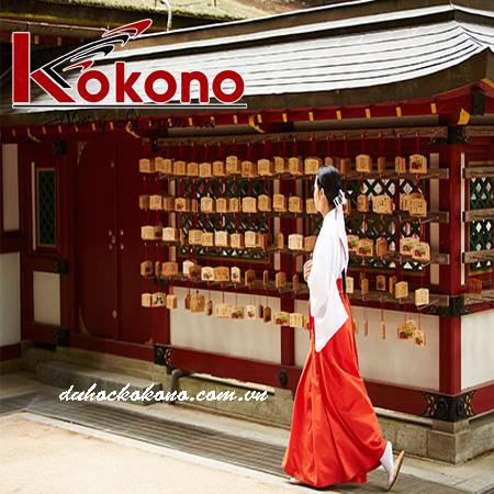 Kokono Tuyển Gấp CTV Phiên Dịch Tiếng Nhật Ở Bình Dương
